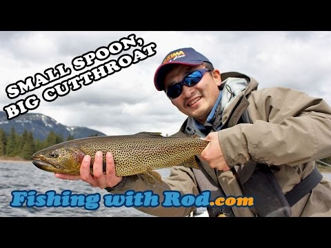 Fishing with Rod: Small Spoon, Big Cutthroat