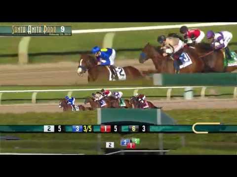 Santa Monica Stakes (Grade II) 02/16/19