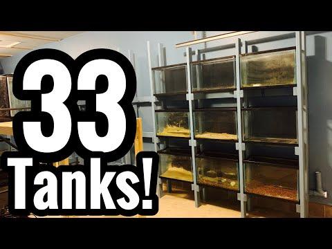 Aquarium 20 Gallon Shelf Rack System Finished