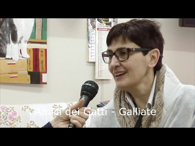 Amici del Gatti - Onlus. Galliate. Prima parte