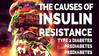 Insulin Resistance | Low Carb High Fat Diet or High Carb Diet …