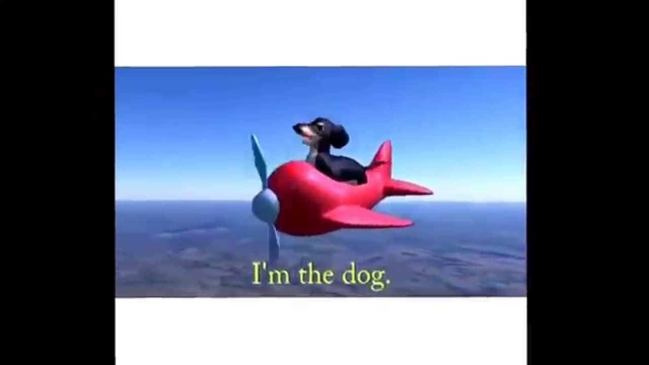 maxresdefault airplane dog barks at nothing youtube