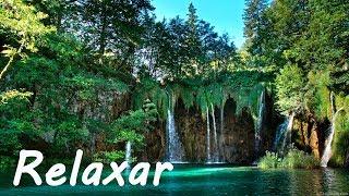 Acalmar a Mente: Música Relaxante Piano e Natureza - Relaxar