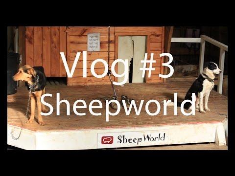 Sheepworld Vlog#3