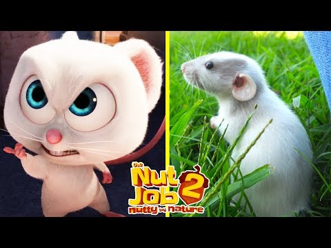 The Nut Job 2 Characters In Real Life | All Characters 2017
