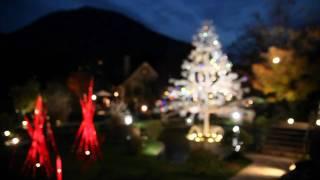 箱根ガラスの森クリスマスの風景-2009
