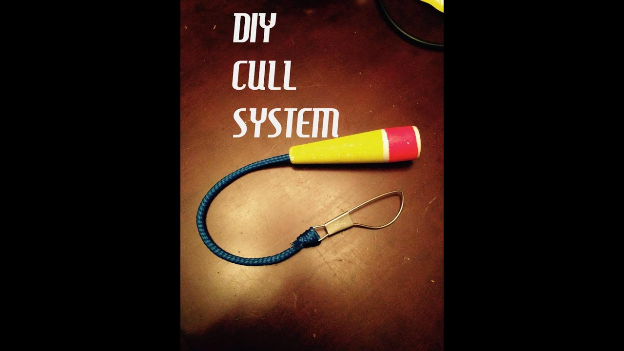 Diy bass fishing cull system how to youtube for Fish culling system