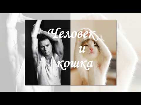 Эдуард Суровый Челокошка Человек и кошка » Видео приколы