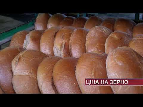 TV7plus Телеканал Хмельницького. Україна: ТВ7+. Вал зерна та ціна на борошно - чи подорожчає хліб восени?