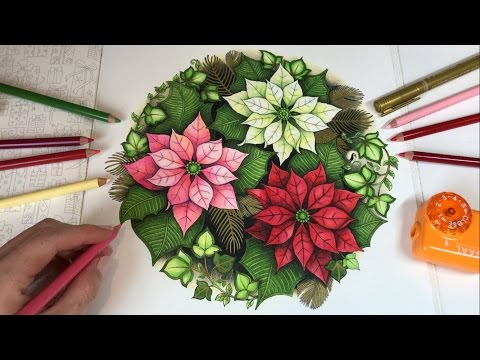 Poinsettias | Johanna's Christmas Coloring Book