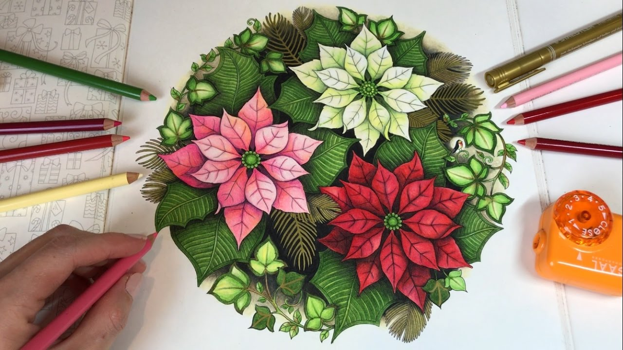 poinsettias johannas christmas coloring book youtube