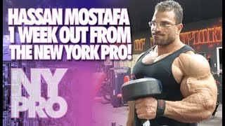 HASSAN MOSTAFA - 1 WEEK OUT FROM THE NEW YORK PRO!