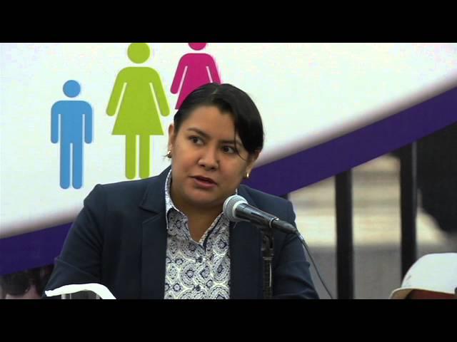 Presentación del Programa de Atención Especializada a  Personas Extranjeras