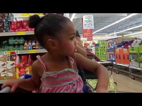 Family Vlog: $300 Aldi's Haul