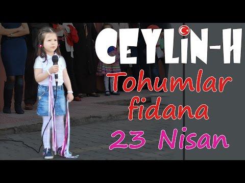 Ceylin- H | Tohumlar Fidana (Yurdumda) -...