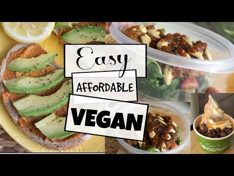 Healthy Food I Pack For Work + Eating Vegan at a Restaurant | What I Ate Today