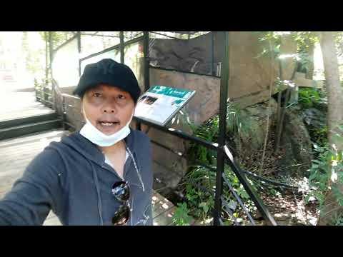เที่ยวสวนสัตว์ เขาสวนกวาง จังหวัดขอนแก่น EP2 แหล่งท่องเที่ยวขอนแก่น เขาสวนกวาง ขอนแก่น