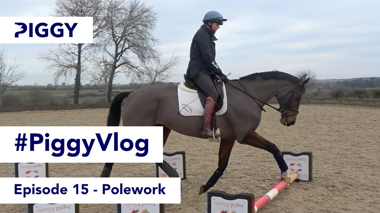 Polework   Episode 15   #PiggyVlog 2021