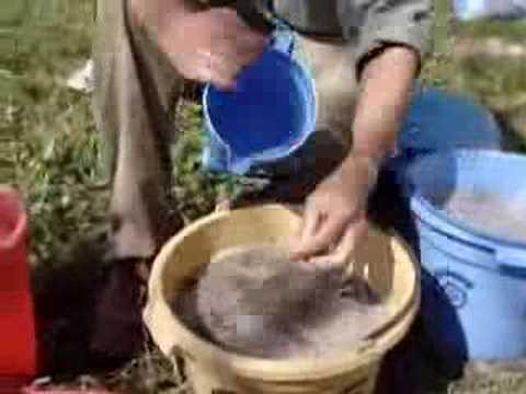 Portable Archaeobotany 1. Bucket Flotation