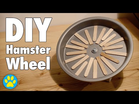DIY Flying Saucer Wheel | Hamsters, Mice & Gerbils