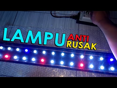 Review Lampu LED HPL Aquascape Di Aquarium Ikan Mas Koki: Emang Cocok? 🤔