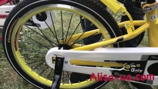 Детский двухколёсный велосипед Royal Child Sport.