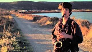 Wild Song II - Lullaby of birdland