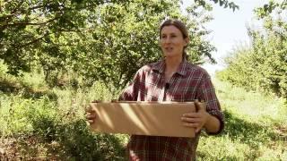 California Farm Link - America's Heartland