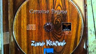 Zjuul Krapuul - Bon voyage