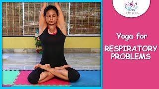 Video Parvatasana || The Mountain Pose || Yoga For Respiratory Problems download MP3, 3GP, MP4, WEBM, AVI, FLV Juni 2018