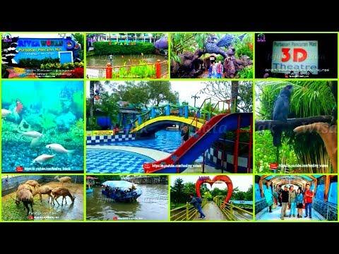 wisata-keluarga-terlengkap-di-purbalingga---jawa-tengah-|-purbasari-pancuran-mas-|-aquarium-raksasa