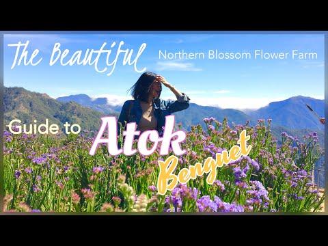 TARA NA SA ATOK, BENGUET! + COMMUTE TIPS! sa Northern Blossom Flower Farm Vlog 5  Princess Pagaduan