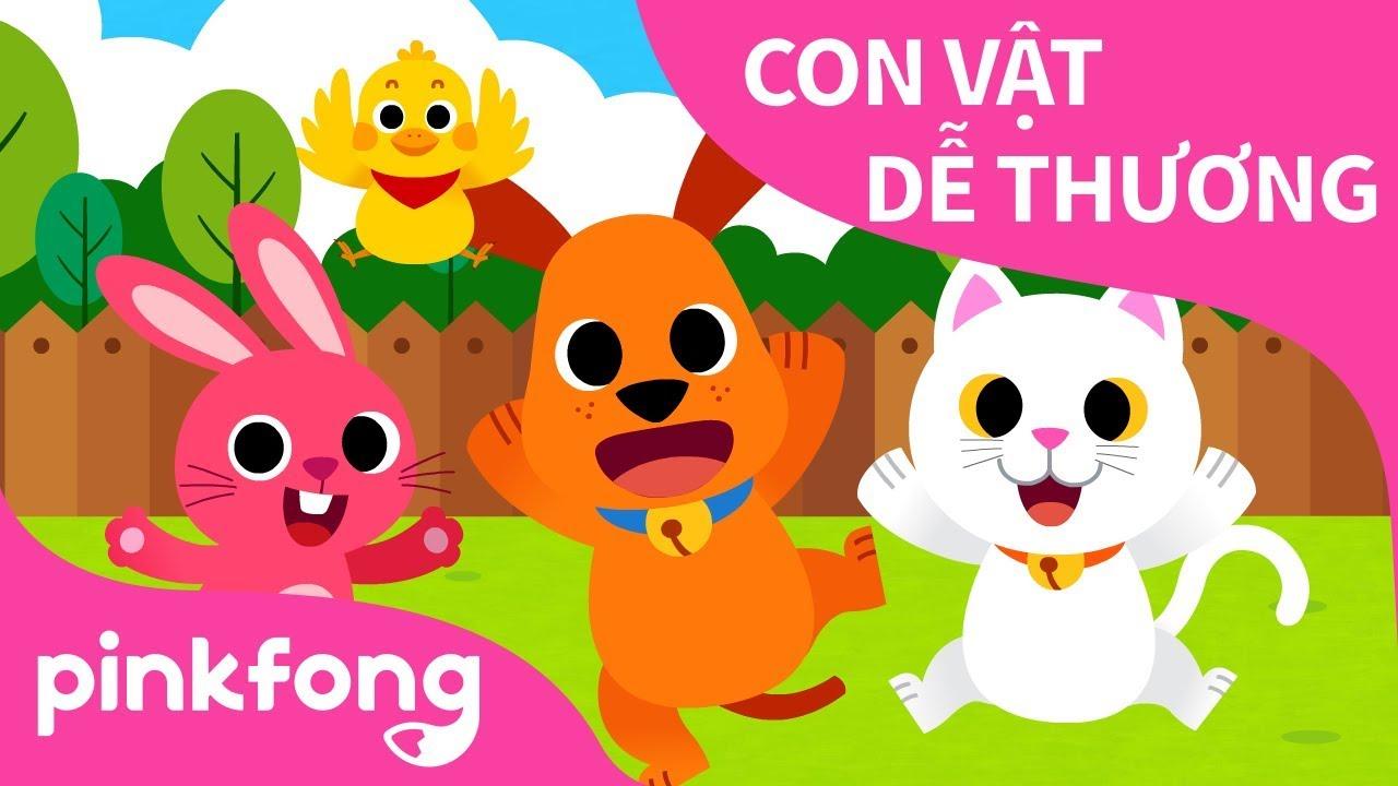 Con Vật Dễ Thương | Bài hát về Động Vật | Pinkfong! Những bài hát cho trẻ em