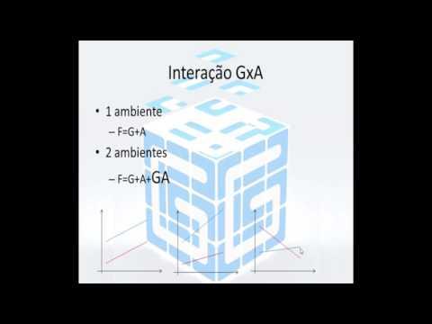 Tutorial GENES #24 Interação GxA e Estratificação Ambiental