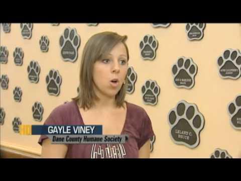 14 Ways Of Giving: Dane County Humane Society