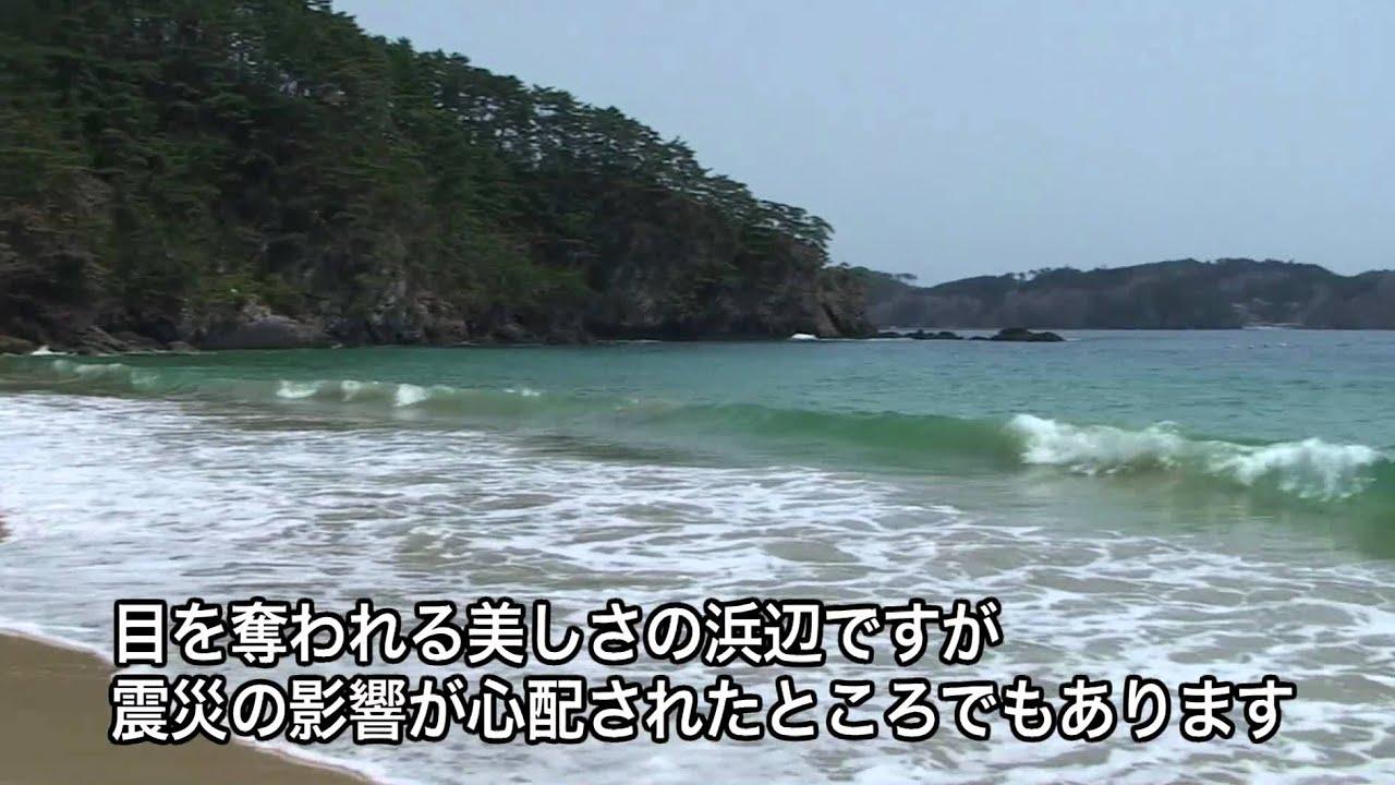 生き抜いた十八鳴浜 2012.4.29_...