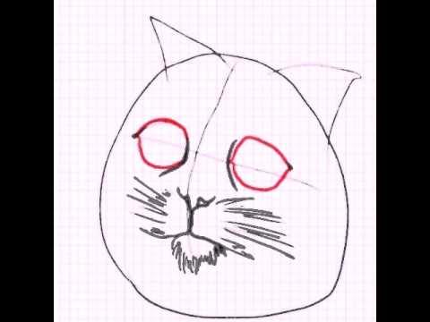 Рисуем вместе  : кот из  Шрека. .