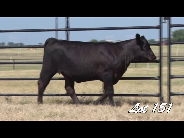 Pollard Farms Lot 151