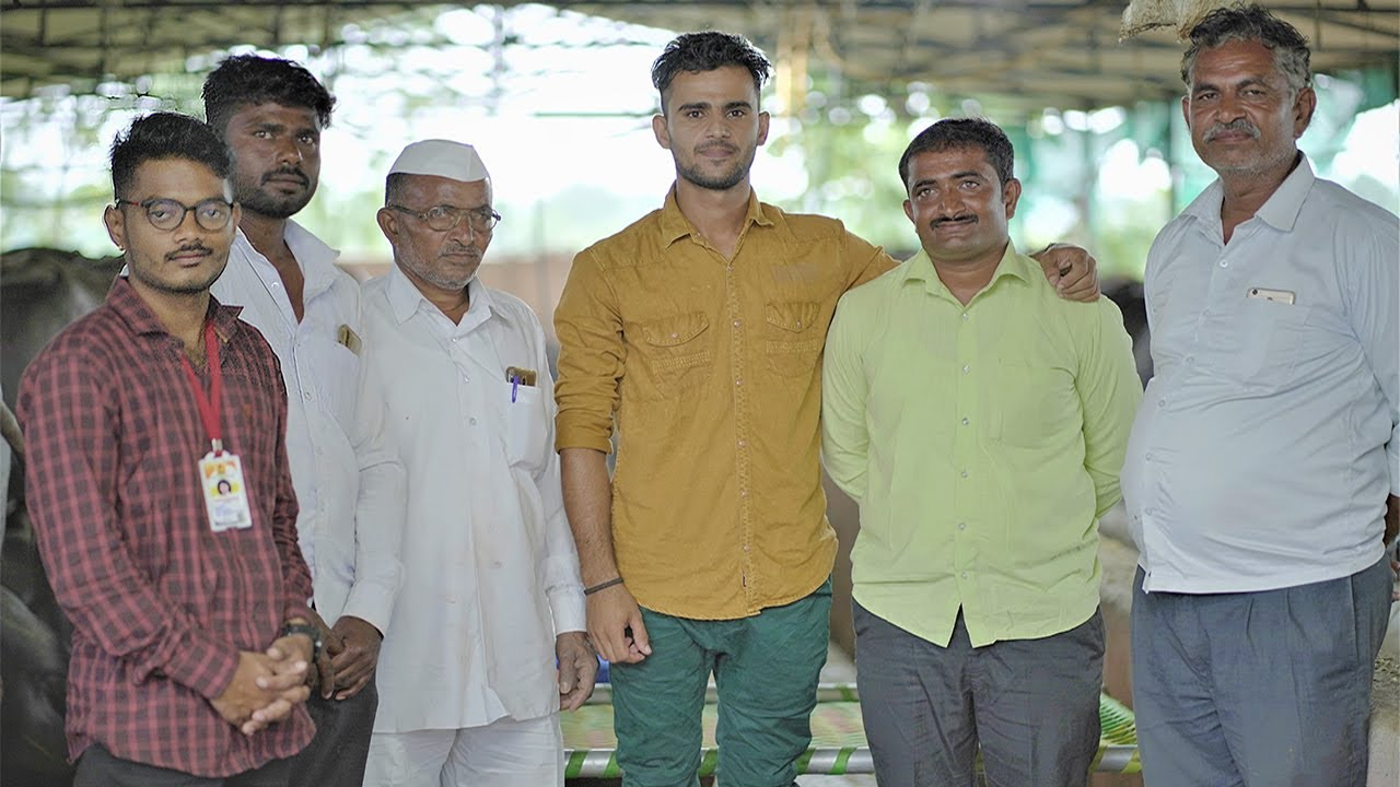 40 मुर्हा म्हशींचा फार्म! Dairy Farm #Story Murrah Buffalo In Maharashtra   Nehra Dairy Farm