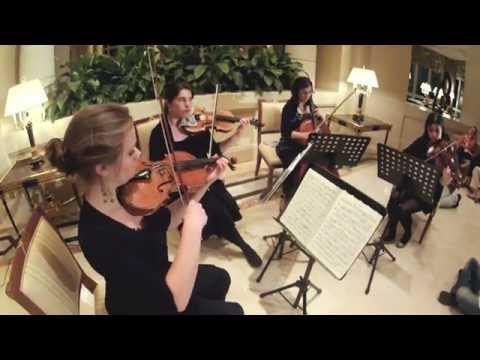 Starling String Quartet at the Four Seasons Doha, Qatar