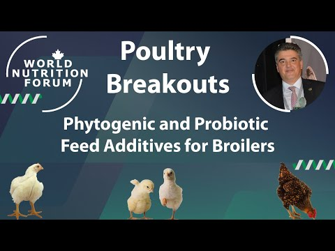 WNF 2016 Poultry Breakouts: 01 Phytogenic and Probiotic Feed Additives for Broilers