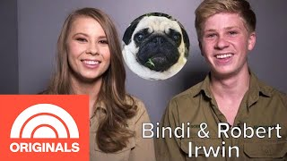 Bindi And Robert Irwin's Family Pug Is 'One Of The Sweetest Animals' They Know | My Pet Tale | TODAY