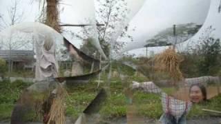 天使部落生態村自主學習營隊