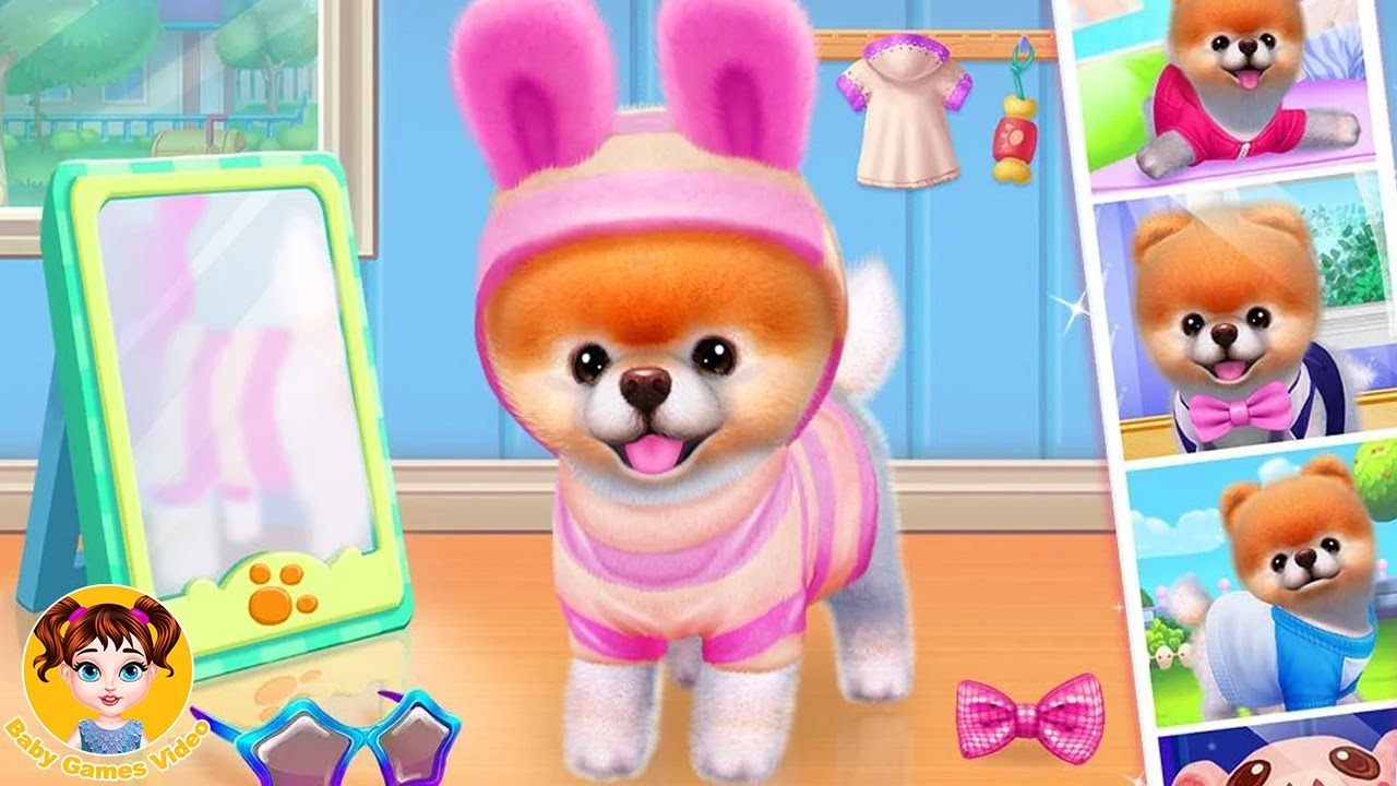 Boo - The World's Cutest Dog - Fun Pet Care Game - Baby Games Video