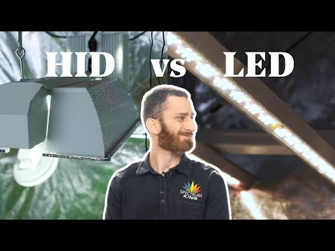 HID Vs LED Grow Lights Comparison - Which Is Best For Growing Weed?