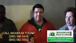 Pest Control Service Hamilton, Mississauga ON.