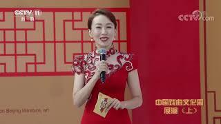 《过把瘾》 20191103 中国戏曲文化周展演(上)| CCTV戏曲