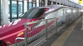 E5系U36編成+E6系Z5編成 東北新幹線 なすの261号 到着 郡山駅