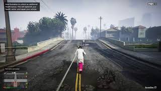 Grand Theft Auto V Total Insanity
