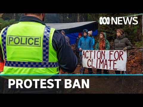 Bob Brown Foundation Protesters Banned From Tasmanian Forest | ABC News